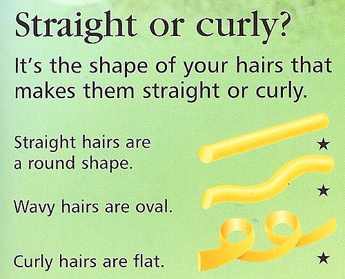 Straight or curly