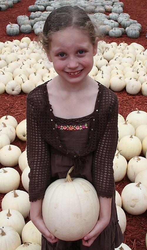 Olivia pumpkin