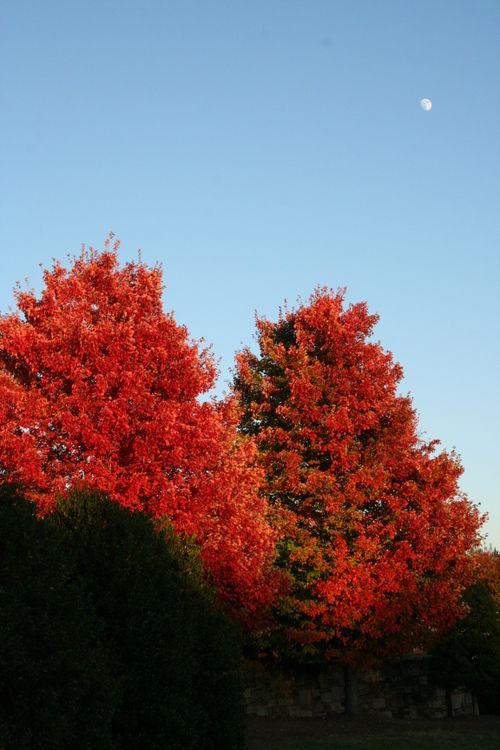 Fall drive 087