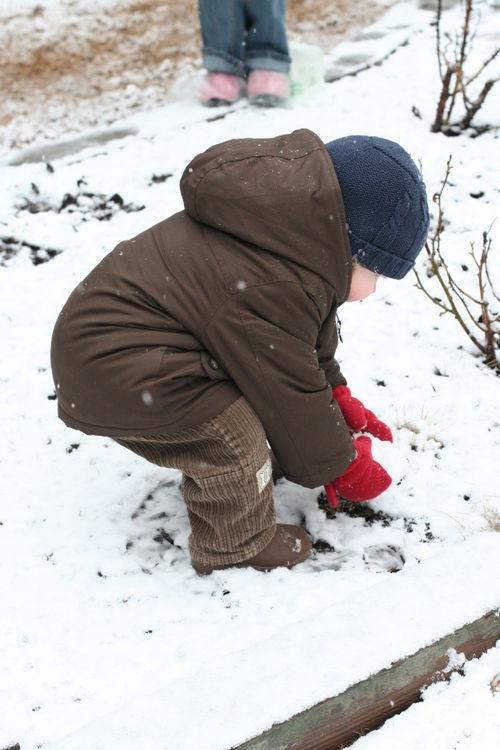 Snow 3-1-09 005