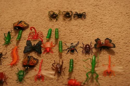 Bugs 014
