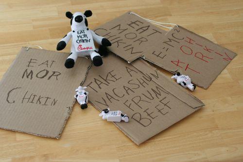 Cows 017