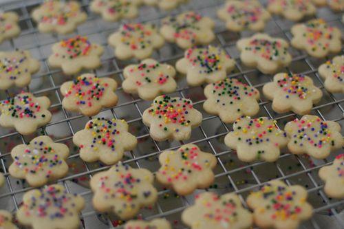 Circus cookies 031