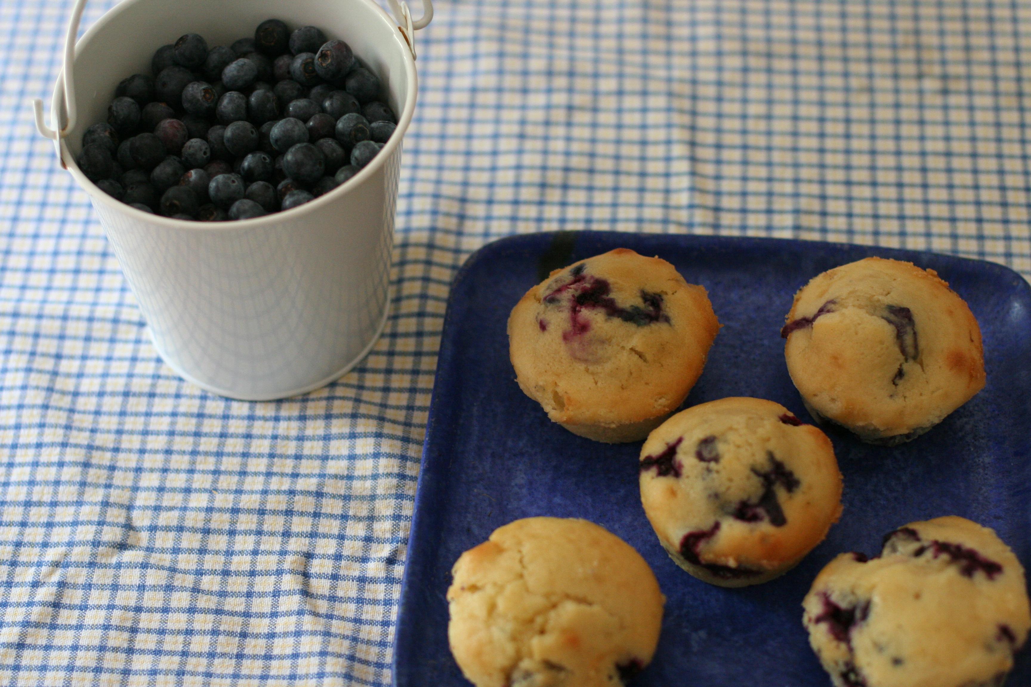 Blueberries 030