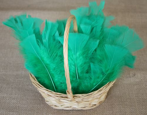 Basket & feathers