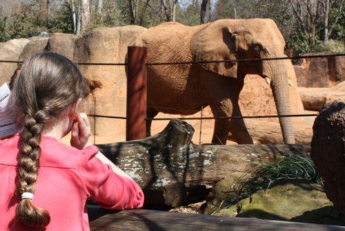 Olivia & elephant