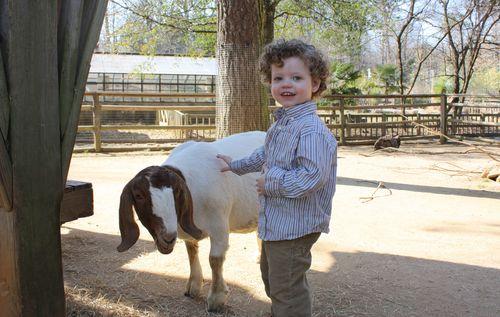 Isaac & goat