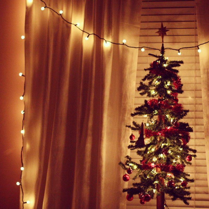 Olivia lights