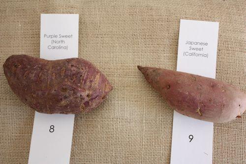 Purple Sweet Potato and Japanese Sweet Potato